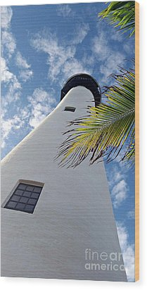 Cape Florida Lighthouse Wood Print by Tammy Chesney