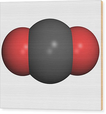 Carbon Dioxide Molecule Wood Print by Friedrich Saurer
