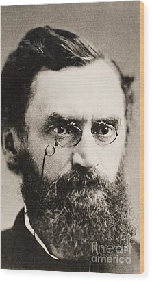 Carl Schurz (1829-1906) Wood Print by Granger