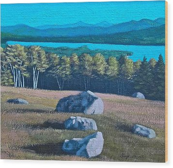 Center Hill Overlooking Webb Lake Wood Print by George Ramos