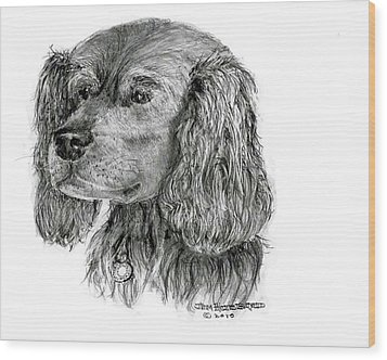 Wood Print featuring the drawing Cocker Spaniel by Jim Hubbard