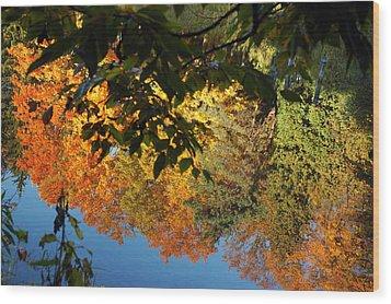 Colorful Reflections Wood Print by LeeAnn McLaneGoetz McLaneGoetzStudioLLCcom