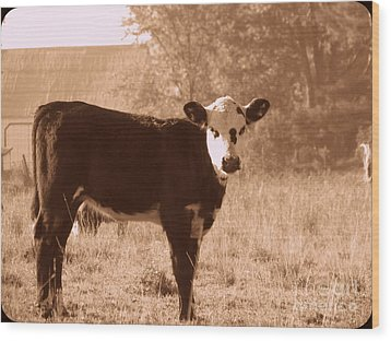 Cow Wood Print by France Laliberte