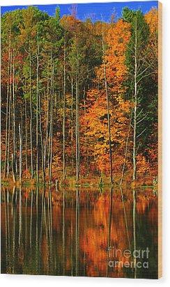 Coxsackie New York State Wood Print by Mark Gilman