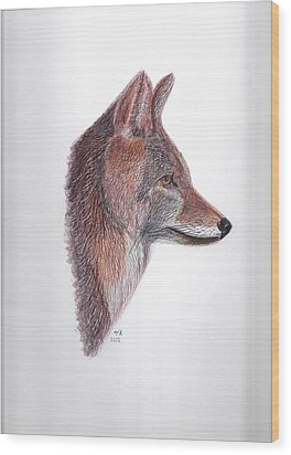 Coyote Wood Print by Tony  Nelson