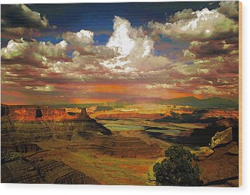 Dead Horse Point Canyon Wood Print by Carrie OBrien Sibley