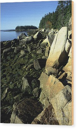 Deer Isle And Barred Island Wood Print by Thomas R Fletcher