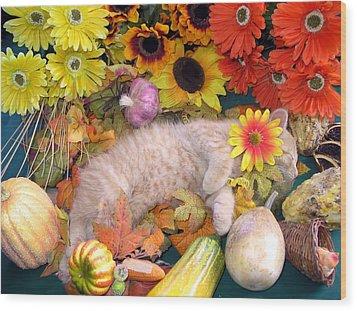 Di Milo - Flower Child - Kitty Cat Kitten Sleeping In Fall Autumn Harvest Wood Print by Chantal PhotoPix