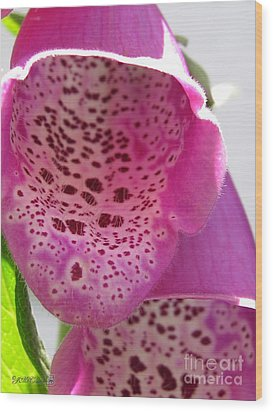 Wood Print featuring the photograph Digitalis From The Excelsior Mix by J McCombie