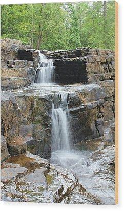 Dismal Falls II Wood Print by Laurinda Bowling