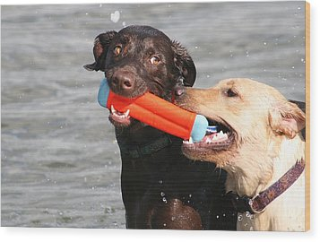 Dogs At The Beach Wood Print by Valia Bradshaw
