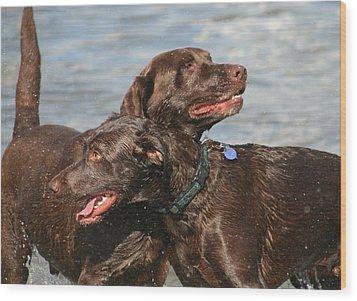 Dogs On The Beach Wood Print by Valia Bradshaw