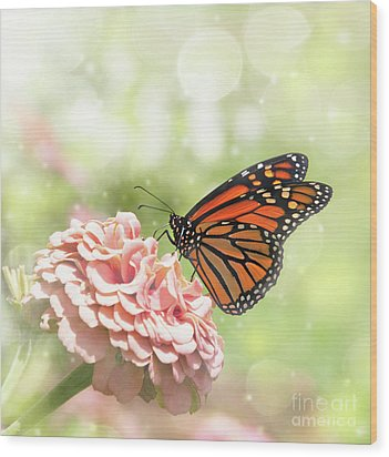 Dreamy Monarch Butterfly Wood Print