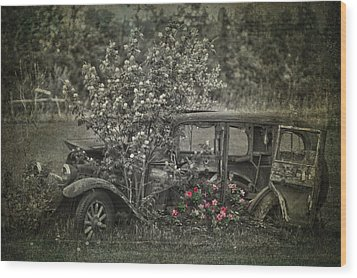 Driven To Find Love  Wood Print by Jerry Cordeiro