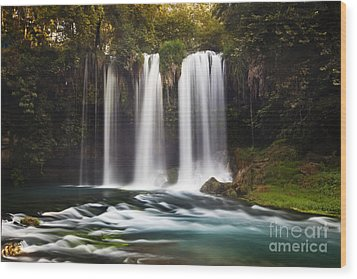 Duden Waterfalls Wood Print by Andre Goncalves