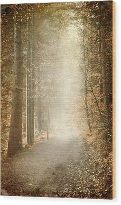 Early Morning Wood Print by Svetlana Sewell