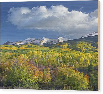 East Beckwith Mountain Flanked By Fall Wood Print by Tim Fitzharris