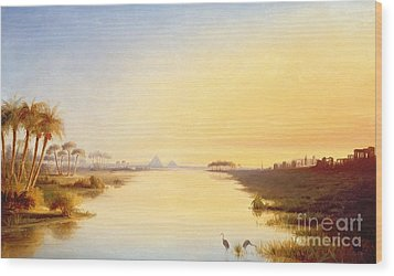 Egyptian Oasis Wood Print by John Williams