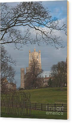 Ely Cathedral  Wood Print by Andrew  Michael