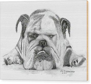 Wood Print featuring the drawing English Bulldog by Jim Hubbard