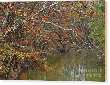 Fall Along West Fork River Wood Print by Thomas R Fletcher