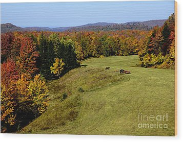 Fall Color Randolph County West Virginia Wood Print by Thomas R Fletcher