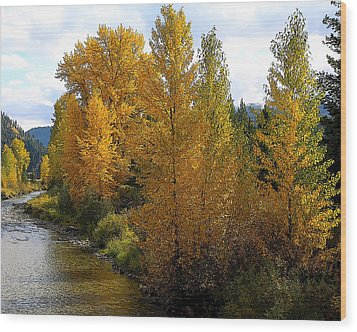 Wood Print featuring the photograph Fall Colors by Steve McKinzie
