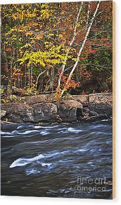 Fall Forest And River Landscape Wood Print by Elena Elisseeva
