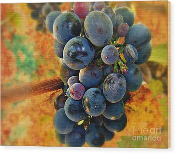 Fall Harvest Wood Print by Kevin Moore