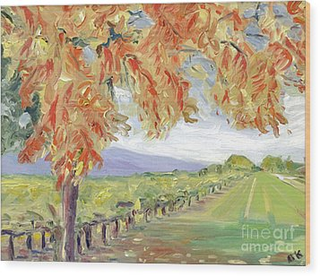 Fall In Napa Valley Wood Print by Barbara Anna Knauf