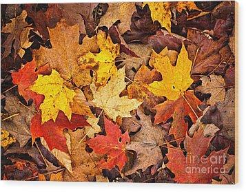Fall Leaves Background Wood Print by Elena Elisseeva