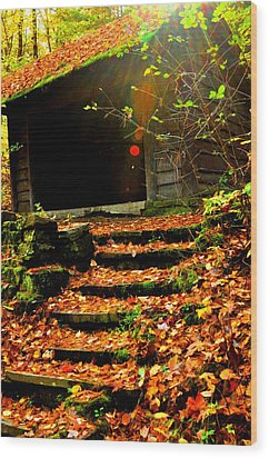 fall time in Ithaca New York.  Wood Print by Puzzles Shum