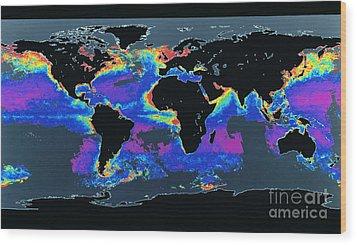 False-col Satellite Image Of Worlds Wood Print by Dr. Gene Feldman, NASA Goddard Space Flight Center