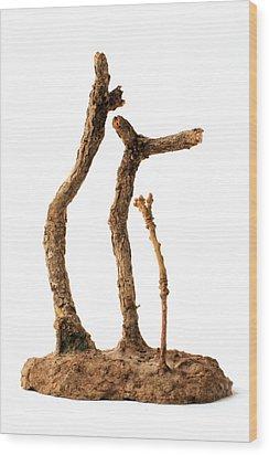 Family Wood Print by Adam Long