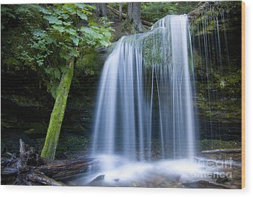 Fern Falls Wood Print by Idaho Scenic Images Linda Lantzy