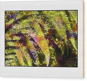 Fern In Dappled Light Wood Print by Judi Bagwell