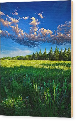 Fields And Dreams Wood Print by Phil Koch