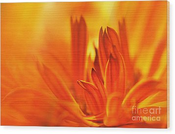 Fire Storm  Wood Print by Elaine Manley