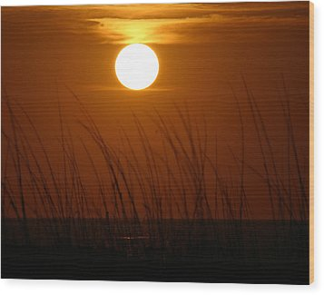 Wood Print featuring the photograph Florida Sunrise by Jeanne Andrews