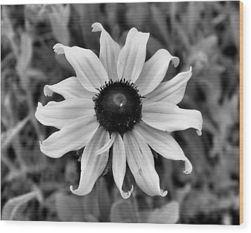 Wood Print featuring the photograph Flower by Brian Hughes