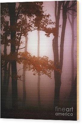 Foggy Misty Trees Wood Print by Mike Nellums