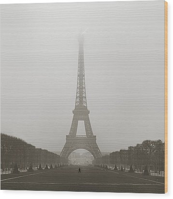 Foggy Morning In Paris Wood Print by Metro DC Photography