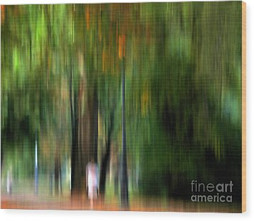 Forest Abstract Wood Print by Odon Czintos