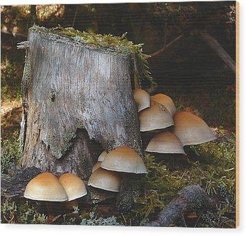 Fungus Unamed Wood Print