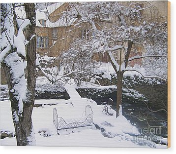 Garden In Winter Wood Print
