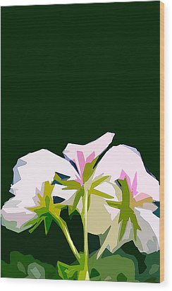 Geranium 3 Wood Print by Pamela Cooper