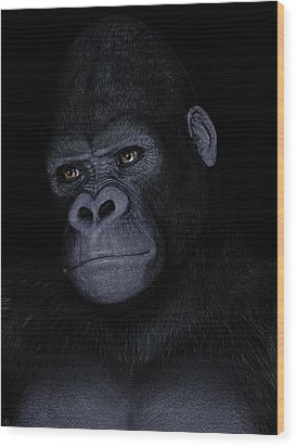 Gorilla Portrait Wood Print by Maynard Ellis
