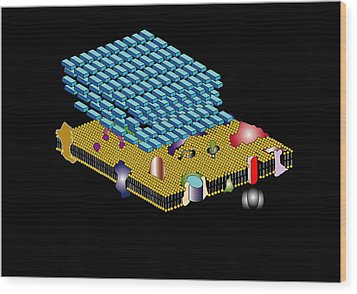 Gram Positive Cell Wall, Artwork Wood Print by Francis Leroy, Biocosmos