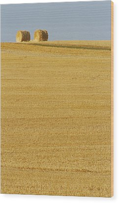Hay Bales, Holland, Manitoba Wood Print by Mike Grandmailson
