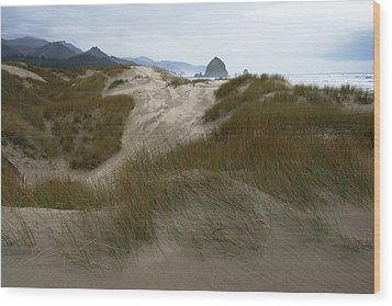 Haystack Rock Wood Print by Steven A Bash